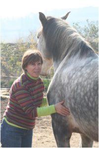 Illustration d'une séance de Jin Shin Jyutsu sur un cheval